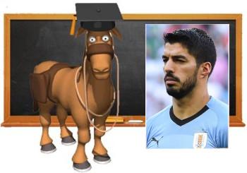 """""""Non coniuga i verbi"""": esame di italiano truccato per il campione Suarez"""
