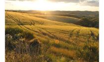 In Toscana l'estate 2021 è all'insegna di outdoor, natura, arte e cultura