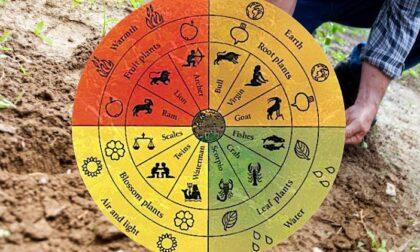 Cornoletame e forze cosmiche: se il Senato cade sulle pseudoscienze...