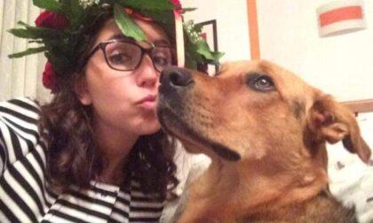 Spacciatore si disfa dell'hashish in un giardino: il cane lo mangia e muore