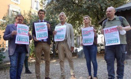 Referendum cannabis: un mese in più per raccogliere le firme