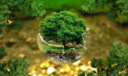 Si è conclusoilF20 Climate Solutions Forum 2021